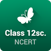 NCERT Solutions for Class 12 icon