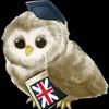 Aprender Inglês ícone