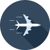Airline Baggage icon