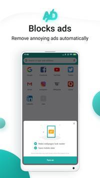 Mint Browser screenshot 2