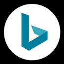 Microsoft Bing Search icon