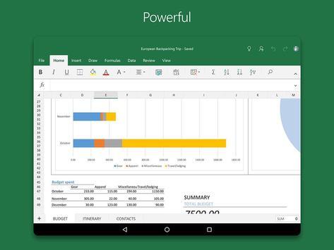 Microsoft Excel 截图 10