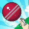Mighty Cricket 아이콘