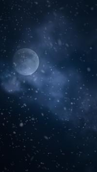 Diggin Winter Live Wallpaper screenshot 5