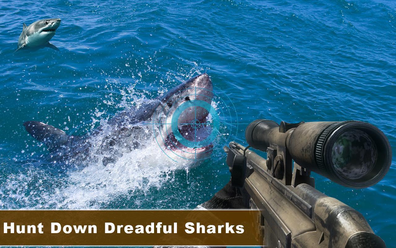 В Шарм-эль-Шейхе продолжается охота на акул | 800x1280