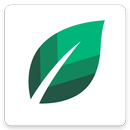 Mint Screen - Live Android Lock Screen APK
