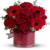 Belles Bouquets De Fleur 2019 icon