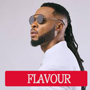 Flavour Songs Offline APK Android
