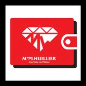 ML Wallet icon