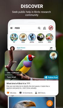 Birds Identifier screenshot 3
