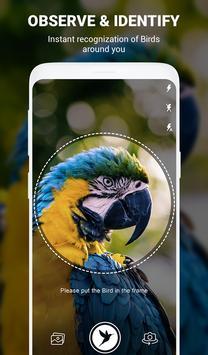 Birds Identifier poster