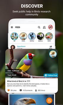Birds Identifier screenshot 13