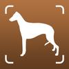 Libro perro identificador raza escáner perro fotos icono