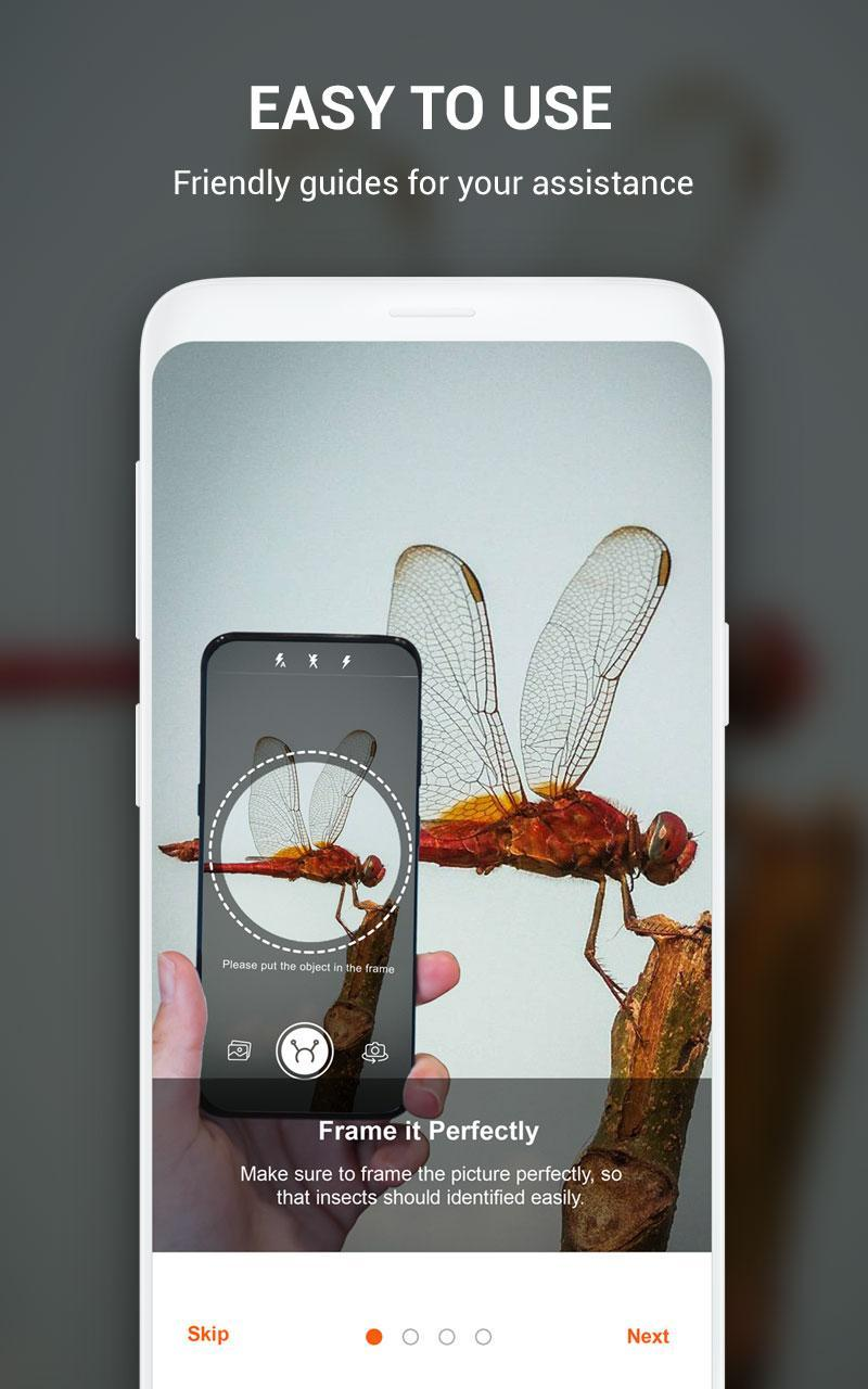 Insect identifier App by Photo, Camera 2019 for Android - APK Download