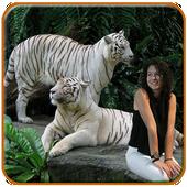Tiger Photo Editor icon