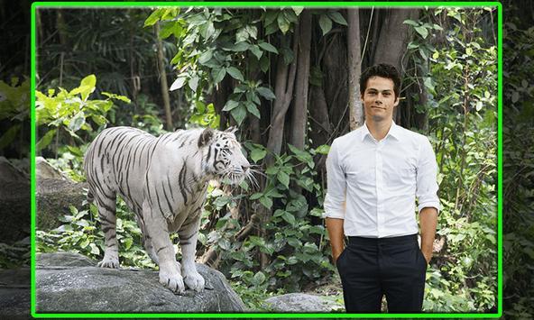Tiger Photo Editor poster
