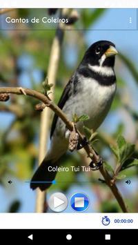 Cantos de Coleiros screenshot 15