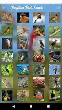 Brazilian's birds sounds screenshot 4