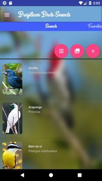 Brazilian's birds sounds screenshot 6