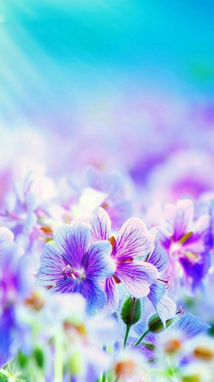 Flower Wallpaper 4k Ultra Hd For Android Apk Download