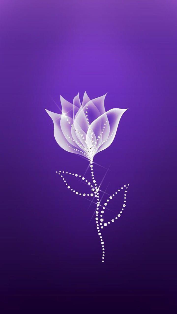 Purple Wallpaper 4k Ultra Hd For Android Apk Download
