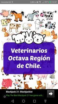 Veterinarios 8va región poster