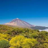 P.N. del Teide icon