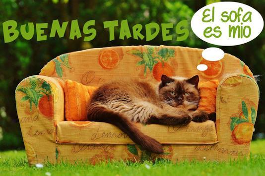 Imágenes Buenas tardes screenshot 5
