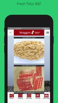 Maggot BSF - SMKN 1 Batumandi Farm screenshot 9