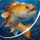 Fishing Hook APK Android