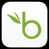 BambooHR ikona