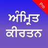 ikon Amrit Kirtan Pro