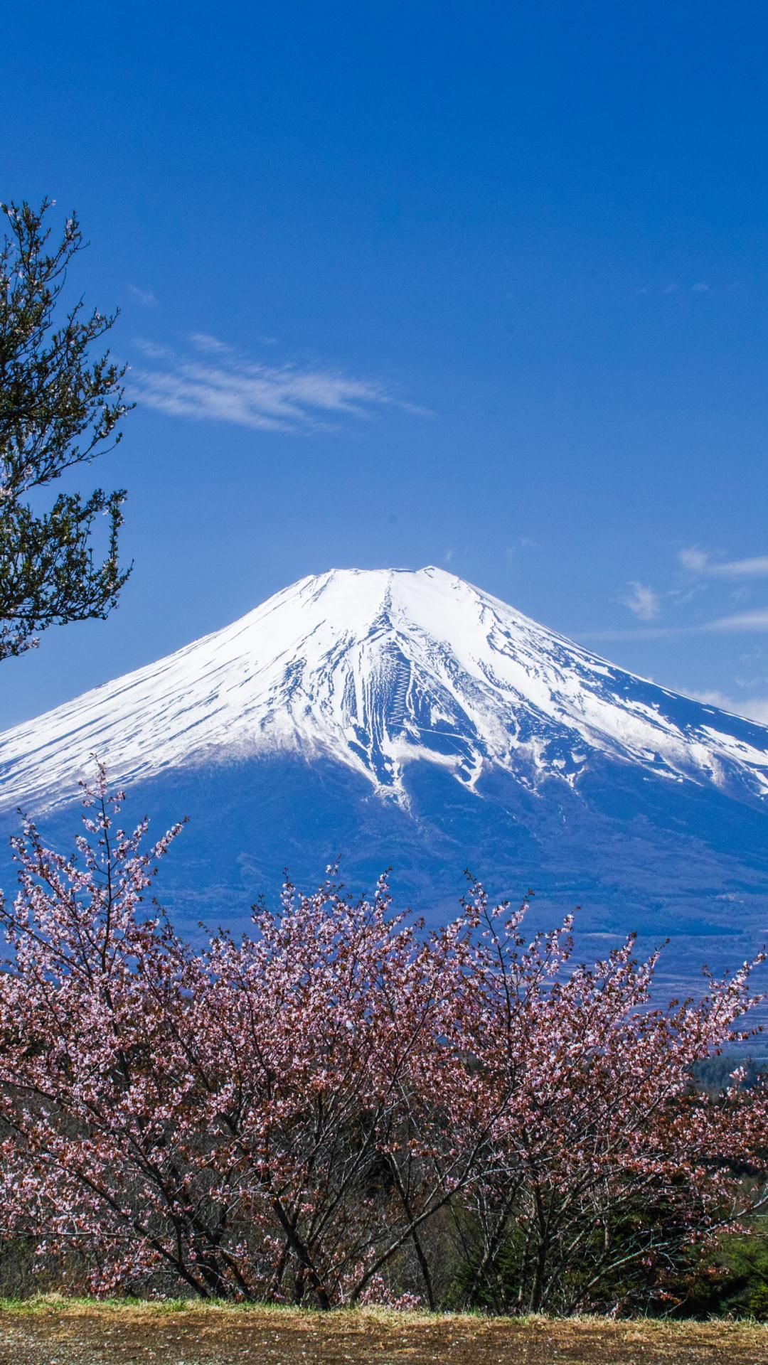 Mount Fuji Wallpaper For Android Apk Download