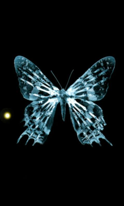 Butterfly Live Wallpaper : 7fon & LWP for Android - APK ...