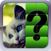 გამოიცანი სურათი icon