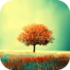 Awesome-Land Live wallpaper HD : Grow more trees Zeichen