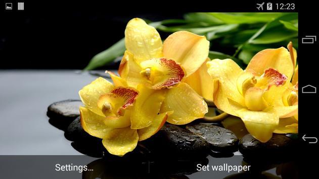 Yellow Orchids Live Wallpaper screenshot 4