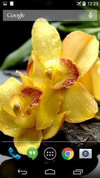 Yellow Orchids Live Wallpaper screenshot 1