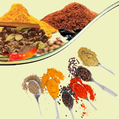 Guess The Spices Quiz icon