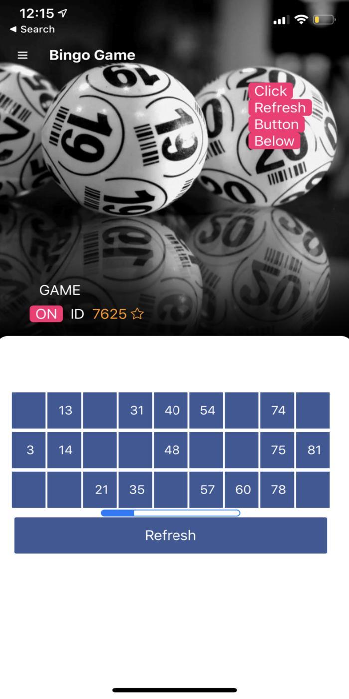 Bingo game virtual poker