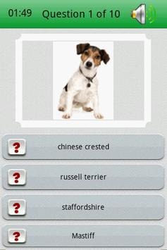 Dog Breed Picture Quiz screenshot 1