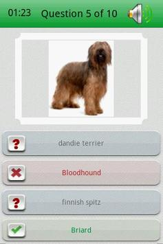 Dog Breed Picture Quiz screenshot 2