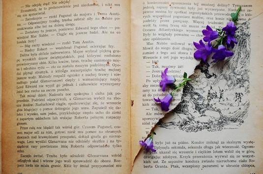 Books wallpapers screenshot 16