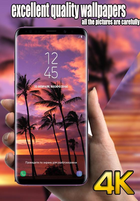 Fondo De Pantalla De Teléfono De Hawaii For Android Apk