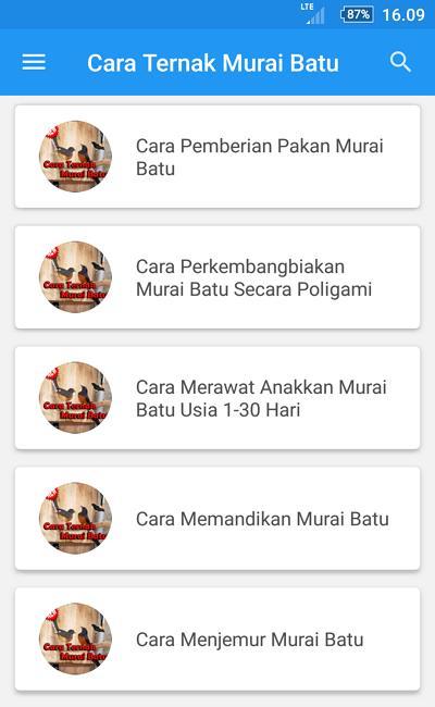 Cara Ternak Murai Batu For Android Apk Download