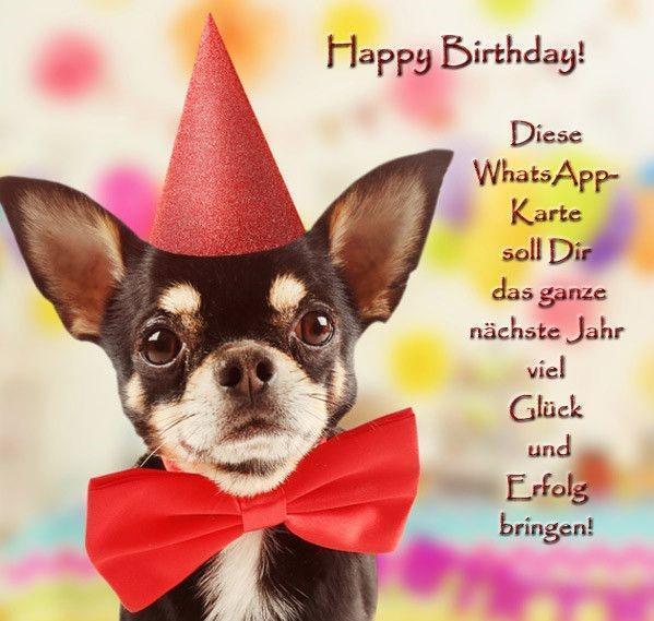 Geburtstagswünsche hund