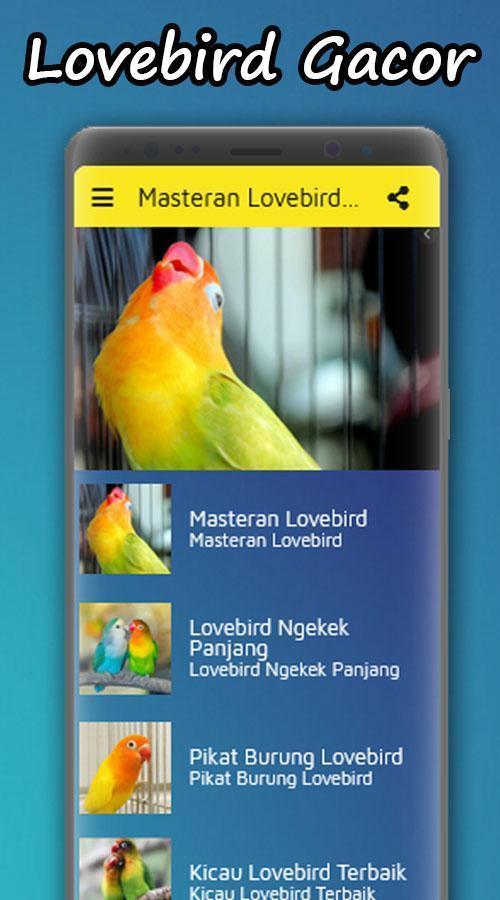Masteran Lovebird Ngekek Panjang Offline For Android Apk Download