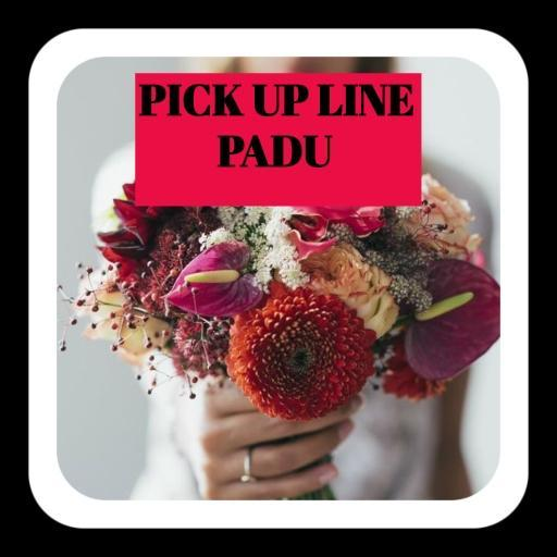 Pick Up Line Padu For Android Apk Download