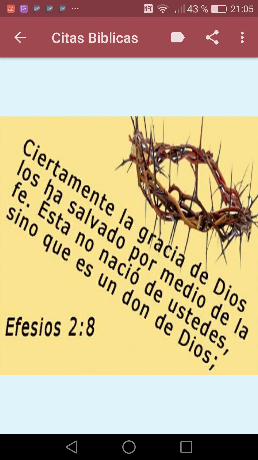 Proverbios Salmos Y Citas Biblicas For Android Apk Download