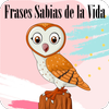Wise phrases of life icon